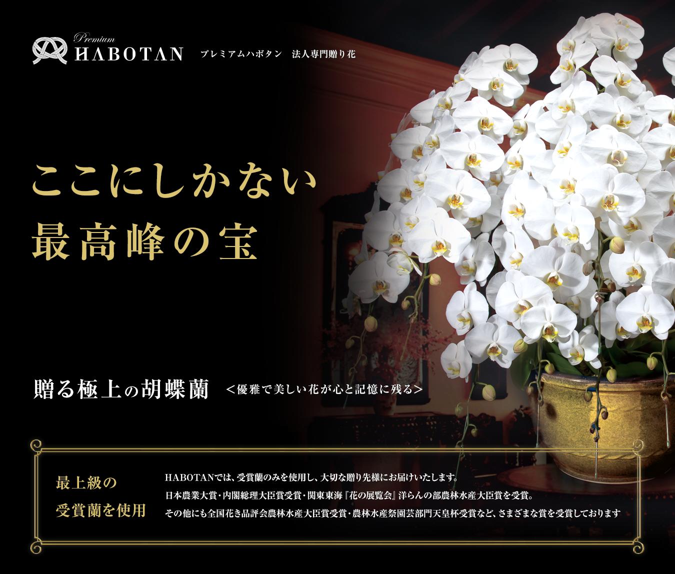 プレミアムハボタン 法人専門贈り花 ここにしかない最高峰の宝 贈る極上の胡蝶蘭 <優雅で美しい花が心と記憶に残る> 最上級の受賞蘭を使用。HABOTANでは、受賞蘭のみを使用し、大切な贈り先様にお届けいたします。日本農業大賞・内閣総理大臣賞受賞・関東東海『花の展覧会』洋らの部農林水産大臣賞を受賞。その他にも全国花き品評会農林水産大臣賞受賞・農林水産祭園芸部門天皇杯受賞などさまざま賞を受賞しております。