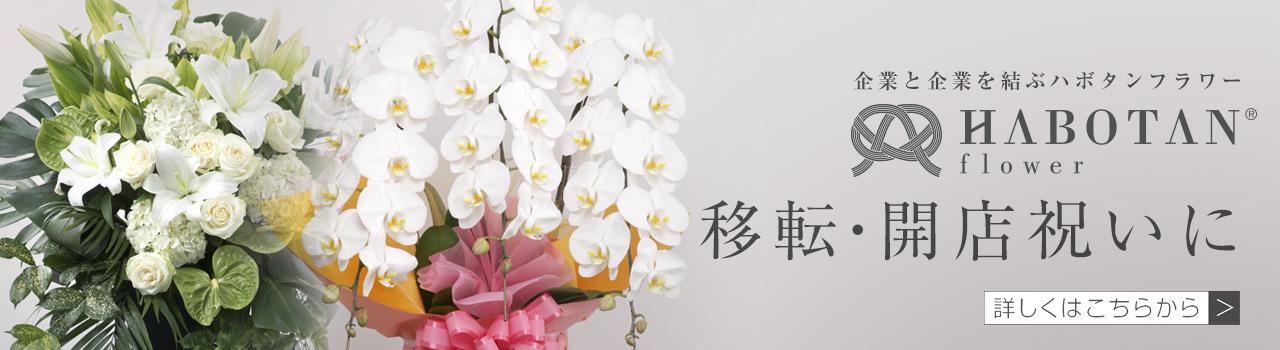 移転・開店祝いに | 法人専門贈り花 ハボタンフラワー