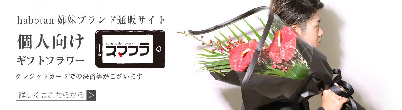 ハボタンの姉妹ブランド「スマフラ」誕生! | 法人専門贈り花 ハボタンフラワー