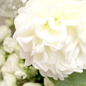 供花 菊なしアレンジメント