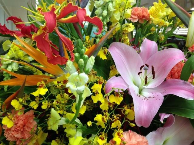 開店祝いのお花を気持ちを込めてスマートに贈ろう01