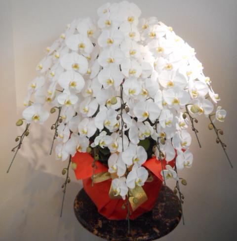 華やかで品質のよいお花 10万円