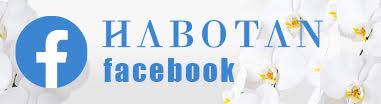 ハボタン フェイスブック